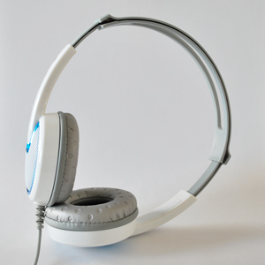 Over the Ear Headphones